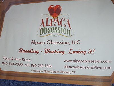 378 53 alpacasign1
