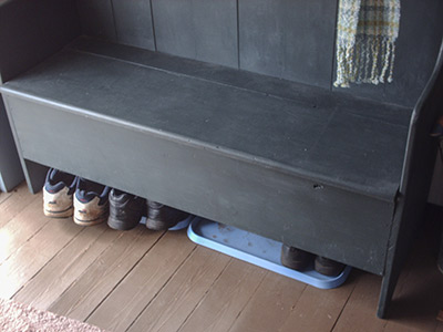 433 blue shoe trays
