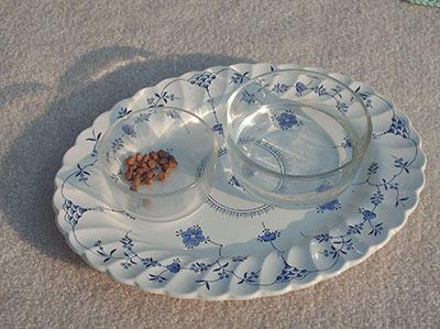448 Emily's new platter