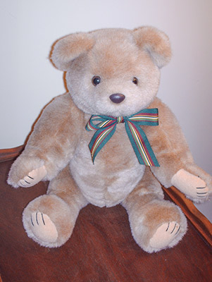 502 teddy